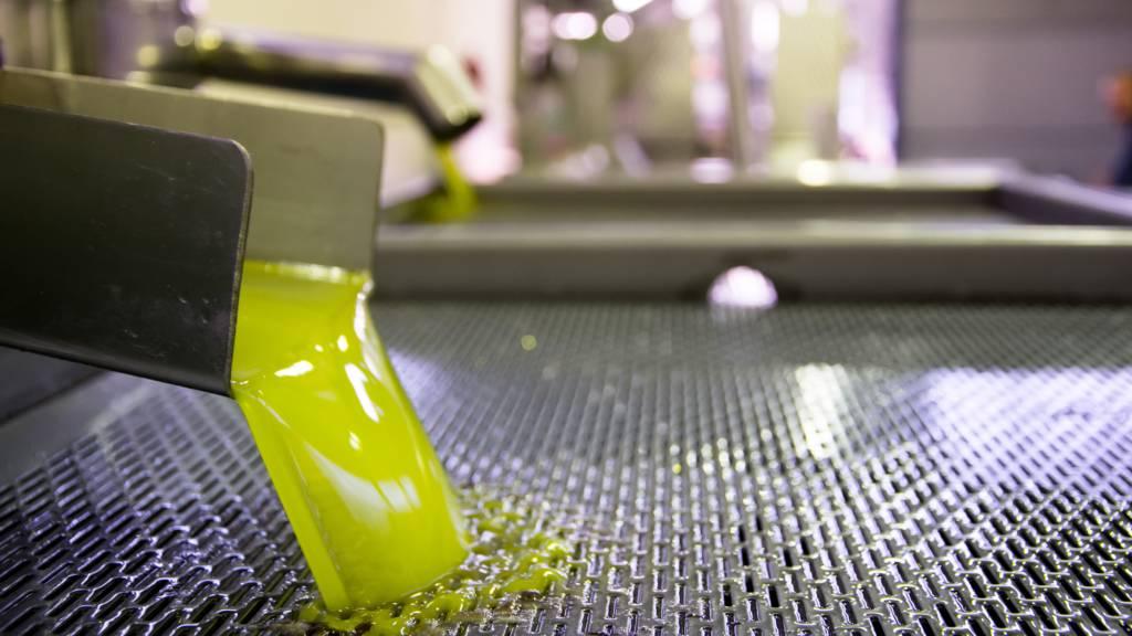 fresh_cretan_olive_oil